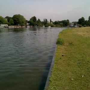 Fishing in Hurst Park