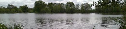 addlestone mill pond fishing lake