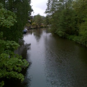 Fishing in Weybridge: The River Wey