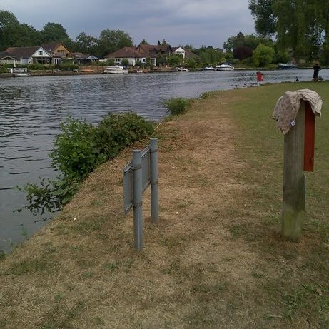 A fishing swim on the Thames in Runnymede Park on a summer day