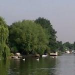 Fishing in Walton