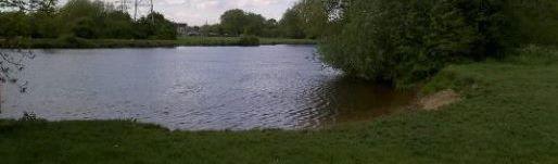 chertsey meads fishing
