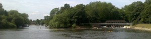 Fishing the Thames at Weybridge: free river angling in Surrey