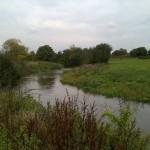 River Mole at Plough Meadows