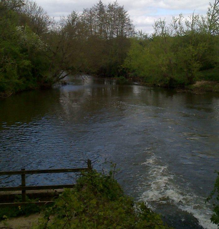 River Wey at Mill Lane, Byfleet