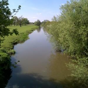 Looking upstream along Broadmead Cut from a footbridge near Send
