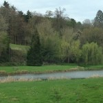 A view of Weston Fishery trout lake in Albury on a spring afternoon