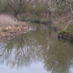 abbey river, chertsey