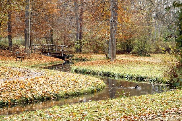 autumn-fishing-news