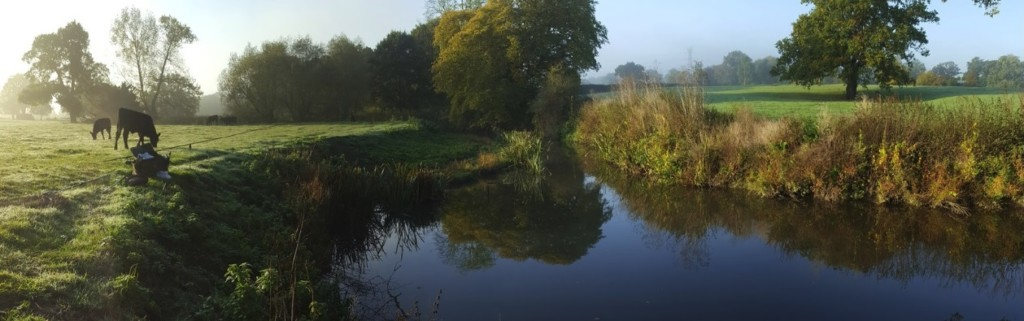 Early morning at an angling spot on the River Mole: Kinnersley Manor.