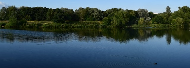 A view of the Lodge Lake angling venue in Milton Keynes on a summer day